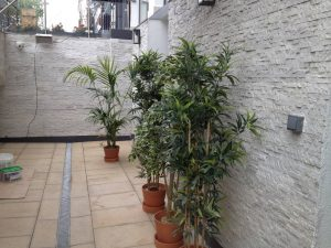 brush-strokes-decorating-painting-contractors-in-london (23)